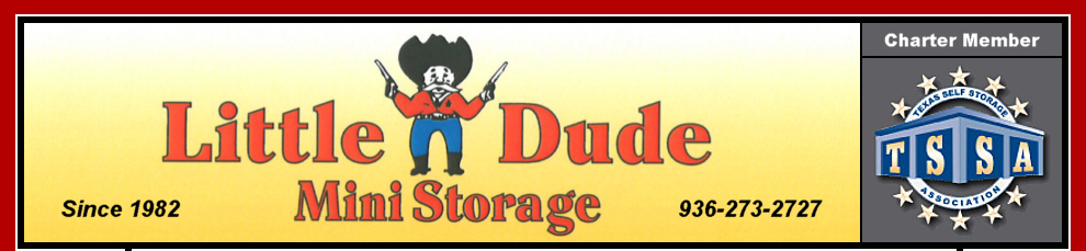 Little Dude Mini Storage - Conroe, Texas